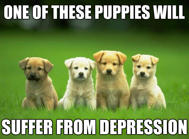 suffer-puppies